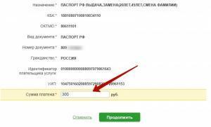 Как оплатить через Сбербанк Онлайн госпошлину: инструкция