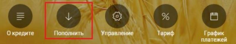 Кнопка «Пополнить»